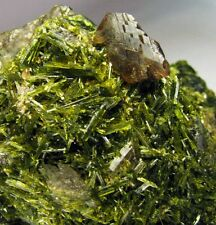 AXINITE GEMMY TRANSLUCENCY XLS on GREEN EPIDOTE BED and GARNETS from PERÚ