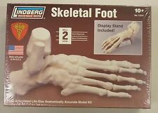 Lindberg 1/1 Life Size Foot Skeleton Anatomy Science Project Model Kit New