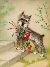 SCHNAUZER CHARMING DOG GREETINGS NOTE CARD