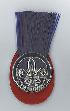 HONG KONG SCOUTS - District Scout Master / TT Trainer Metal Plume (Hat Patch)