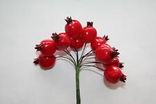 12 x MEDIUM RED ARTIFICIAL ROSEHIPS BERRIES 20mm ON WIRED STEMS CHRISTMAS CRAFT