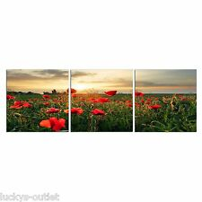 Elementem Photography Red Poppies Photographic Print Set Wall Decor Picture