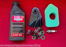 VICTA 18 INCH LAWN MOWER SERVICE KIT OIL, FILTER 698369, PLUG & BLADES CA09506S