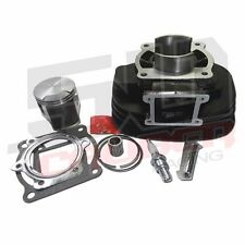 Yamaha Blaster ATV YFS200 200cc Engine Cylinder Kit Piston Head Rings Plug Part