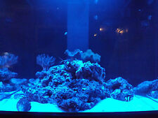 "48"" Moon Light Moonlight Shimmer 30 LED Fish Aquarium Reef Fresh Power Supply"