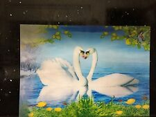 3D Lenticular Printing Moving/Changing Picture Wall Decor *Swans*