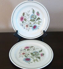 Ridgway Ironstone England Spring Song Dinner Plates x2 Green Band Blue Floral