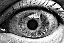 Framed Print - Black & White View of the Human Eye (Picture Poster Medical Body)