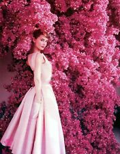 AUDREY HEPBURN 8X10 GLOSSY PHOTO PICTURE