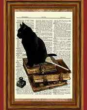 Black Cat Vintage Books Dictionary Curious Art Print Poster Picture Old Book