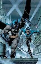 JIM LEE rare BATMAN NIGHTWING paper giclee GOTHAM'S CRIMEFIGHTERS 2007 + COA!!