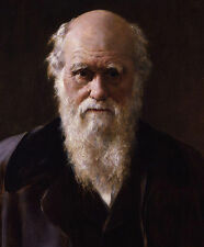 Charles Darwin Painting - High Quality Canvas Print