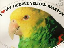 Double Yellow Amazon Parrot Exotic Bird Vinyl Decal Bumper Sticker