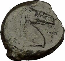 Carthage in Zeugitana 300BC Tanit Cult & Horse  Rare Ancient Greek Coin  i53599
