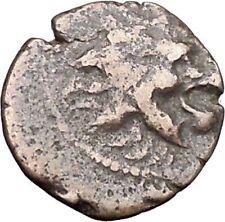 ANTOCHOS VII Seleucid Ancient Greek Coin Nemean Lion Hercules Labor i47572