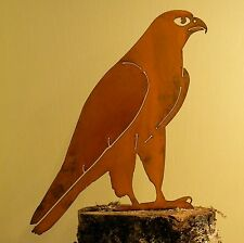 Rusty Metal  Peregrine Falcon Silhouette Accent for Inside or Out, Porch, Fence