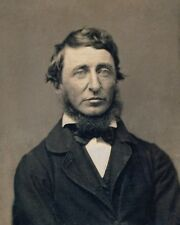 AMERICAN AUTHOR HENRY DAVID THOREAU PORTRAIT 8X10 PHOTO 1856