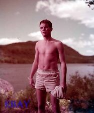Russ Tamblyn barechested Vintage 4 X 5  Transparency Peyton Place