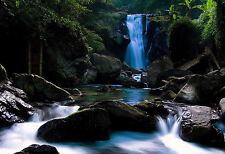 Framed Print - Rainforest Waterfall (Picture Poster Water Trees Nature Scenic)