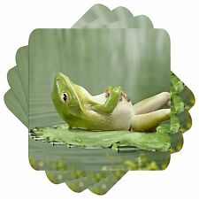 After Dinner Frog Set of 4 Square Coasters Bar Table
