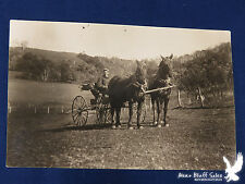 RPPC Horse 4-Wheel Carriage Buggy Top Down Wisc Countryside Fountain City 1918