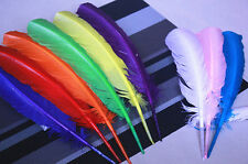 Wholesale! 10-500pcs Hard Rod Turkey Feathers 10-12inches/25-30cm