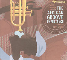 The African Groove Experience 2007 by Spha Bembe - Disc Only No Case