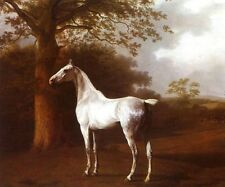 Beautiful oil painting White Horse in Pasture landscape with big tree canvas