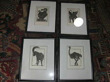 Four Alan James Robinson engraving etching Griffin Dodo bird Ram Ostrich