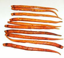 "10 X 6"" ORANGE LATEX HOLOGRAPHIC SAND EELS FOR SEA BOAT PIKE COD BASS FISHING"