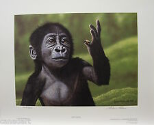 "Glenn OLSON ""Fascination"" LTD art print Chimpanzee mint print Certificate COA"