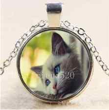 Cute Quiet Cat Cabochon Photo Glass Tibet Silver Chain Pendant Necklace
