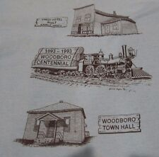 Vtg 90s Woodboro Wisconsin Centennial T Shirt Mens Large Town Hall Teal