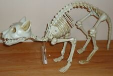 Halloween LED SKELETON CAT New w/Tag Light Up Eyes/Motion Mouth