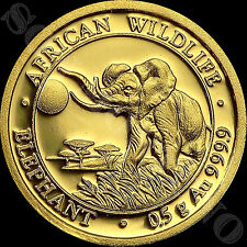 2016 SOMALIA GOLD ELEPHANT - 1/2 Gram 24k Coin in Capsule African Wildlife .9999