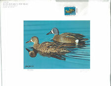 ARIZONA #5 1991 DUCK STAMP PRINT BLUE WINGED TEAL by Brian Jarvi Edition: 890