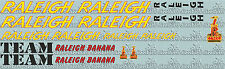Raleigh Banana team issue - perfect for re-sprays