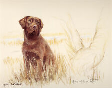 LABRADOR RETRIEVER CHOCOLATE DOG LIMITED EDITION PRINT - Artists Proof # 22/850