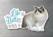Lifes better with a Ragdoll sticker quality 7 year vinyl kitten breed cat