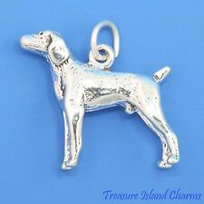 GERMAN SHORTHAIR POINTER WEIMARANER DOG BREED 3D 925 Solid Sterling Silver Charm