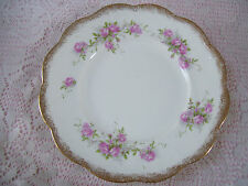 "Antique Smith Phillips Semi Porcelain 9 1/4""  Dinner Plate Early 1900"