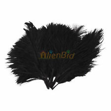 """Wholesale 50 Pcs """"4-6""""Iinch High Quality Natural Ostrich Feathers Color Black Us"""