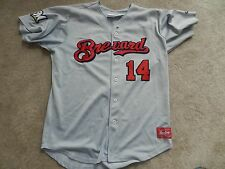 2013 Brevard County Manatees Game Used Road Jersey #14 Greg Hopkins Brewers