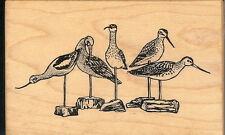 PSX Rubber Stamp G-1737 Rare Seaside Bird Statues   S37