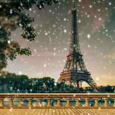 Eiffel Tower 10'x10' CP Backdrop Computer printed Scenic Background YKY-142