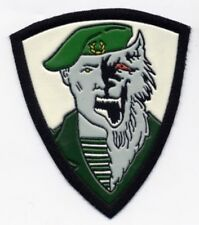 RUSSIAN MILITARY SLEEVE PATCH SPETSNAZ SPECIAL FORCE VEREWOLF GREEN BERET SF