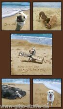 Sand Scribbles Panel Large Hunde Patchworkstoff Patchwork Stoffe Dogs 60cmx110cm