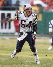 New England Patriots TEDY BRUSCHI Glossy 8x10 Photo NFL Football Print Poster