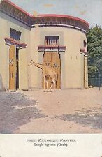 POSTCARD  ANIMALS  GIRAFE   Anvers  Zoo