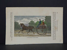 Horses, c.1890 A Fine Trotter In Light Harness #43